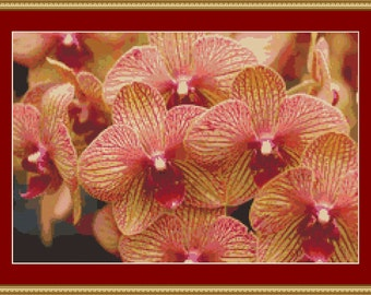 Yellow Red Orchids Cross Stitch Pattern