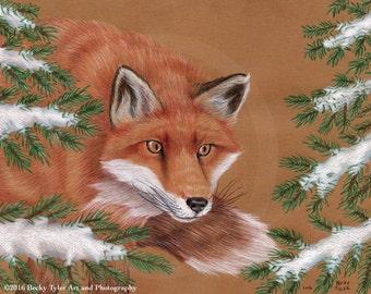 Red Fox Original Drawing