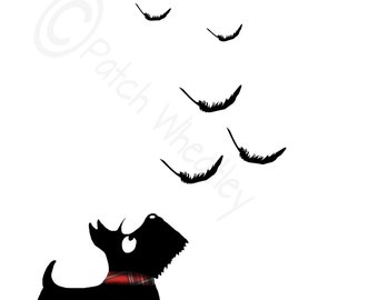 Scottie Dog 'Feathers'  Art Print 8X6 inch