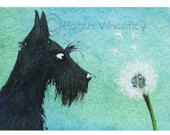 Scottie Dog Art Print Scottish Terrier 'Dandelion' #100