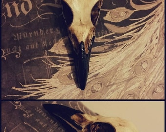Carrion Crow Necklace