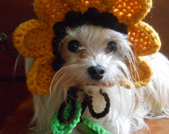 Crocheted Sunflower Hat for Cat or Dog, Yellow Flower Hat for Pet, Spring Flower Pet Hat
