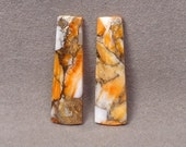 ORANGE SPINEY OYSTER With Bronze Metal Matched Pair Of Cabochons Set of 2