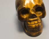 Tigers Eye Crystal Skull 2 inches 50mm Courage, Determination, Money Maker!