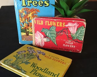 Vintage botanical wild flower and tree mini books set of 3 hard cover mantel shelf blue home decor