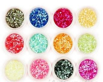 12 pots in 1 Nail Art Glitter Shell powder set for DIY Handmade & UV-Gel Nails Decor