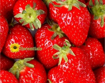 1/2 Ounce Strawberry Flavor Oil