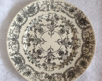 Antique T&R Boote Dinner Plate