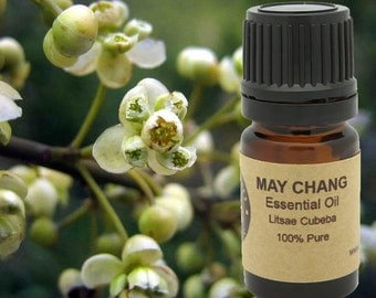 May Chang Essential Oil  5 ml, 10 ml or 15 ml