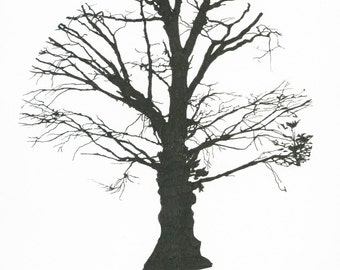 Tree Silhouette, pen drawing
