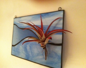 Shades of Blue Stained Glass Air Plant Holder