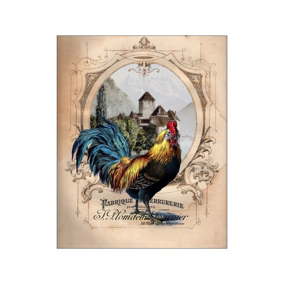 Zebra Print Kitchen Decor: French Chateau Rooster I Rooster Art Print 8x10 By