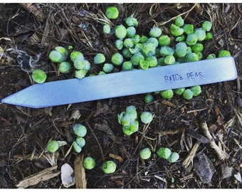 Peas Plant Stake, Plant Marker, B!%*# please