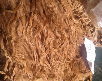 10 -11 inch Pearly Caramel suri alpaca locks