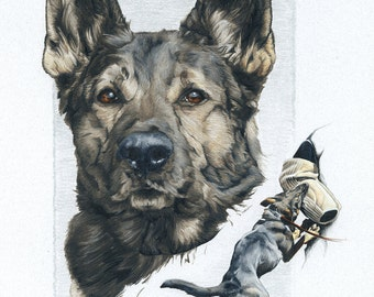 German Shepherd Police K9 Drawing Print