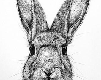 Hare (A4) Original Art