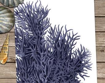 Coral beach decor - Coral 9 in blue - sea coral wall art sea coral print Nautical Decor Nautical Home Decor Blue and white wall art Blue art