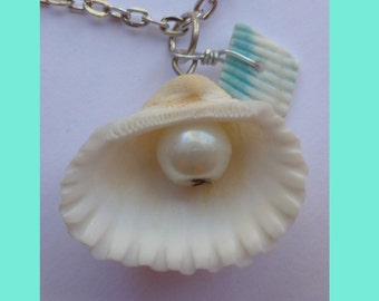 Necklace sea shell