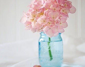 Print of pastel pink hydrangea flower in blue mason jar -  flower photography - shabby chic- floral fine art - wall art -