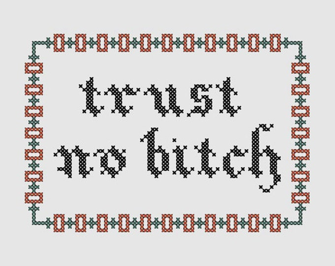 Cross stitch pattern 'Trust no bitch' - inspired by Orange is the new black