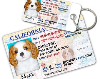 California Driver License Custom Pet ID Tags and Wallet Card - Dog ID Tag - Personalized Pet ID Tags
