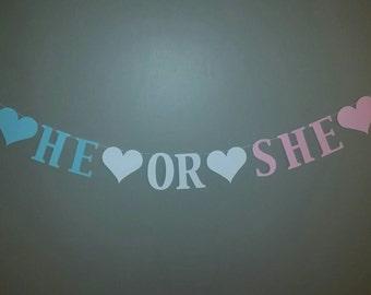 He or She Banner, Gender Reveal Banner , Pregnancy Reveal Banner , Gender Reveal Party Decorations , Gender Reveal Decorations , shower
