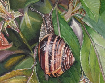 Snail in a Crabapple Tree is a fine art giclee made from my original watercolor