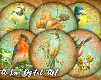 "BIRDS vintage ephemera, digital collage sheet, instant download circle 2.5"" for round magnets making, pocket mirror images, cupcake toppers"