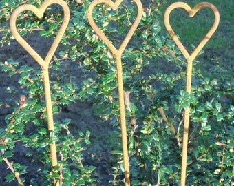 Amore heart topped plant stakes. Pack of three.