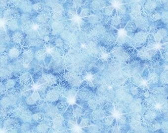3x4 Blue Winter Snowflake Backdrop for Pro Studio Photography - FabVinyl 3x4 ft (FV9026)
