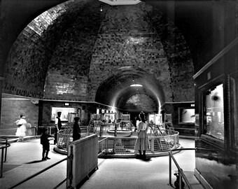 1905 - Belle Isle Aquarium