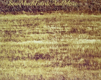 Summer Danscapes Fabric~Fields of grass~Mustard & sepia brown~Harvest~By the 1/2 yd~RJR~Dan Morris