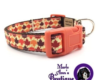 Fall Dog Collar / Autumn Dog Collar / Fall Leaves / Autumn Leaves / Dog Collar and Leash / Adjustable Dog Collar