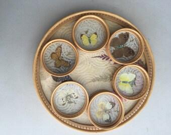 Bamboo Decorative Tray plus coasters