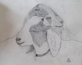 Goat Besties