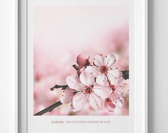 Floral decor cherry blossom print, printable quote, flower poster floral printable art cherry blossom art Sakura The fleeting nature of life