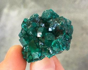 Dioptase crystal - heart chakra crystals - raw dioptase - emotional healing crystals and stones - raw crystals and stones - dioptase love 15