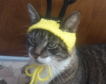 Bumblebee Cat Hat, knit hat for cat, cat costume, halloween
