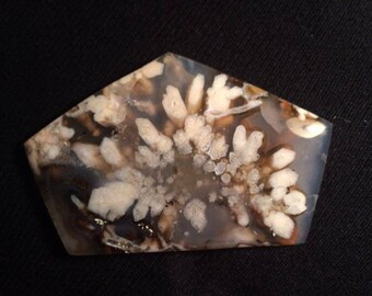 dark brown  and plume agate