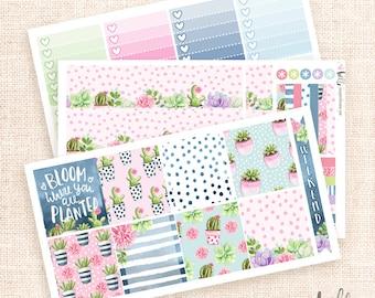 Succulents - Horizontal ECLP Kit / 3 sheets - planner stickers for Erin Condren