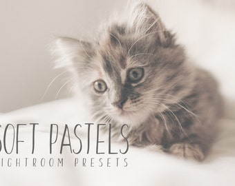 10 Soft Pastel Presets for Lightroom - warmth, color, filters, matte.