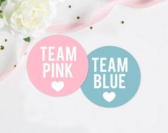 Gender Reveal Party Stickers, Team Pink Team Blue Stickers, pink and blue party, party stickers, sticker set