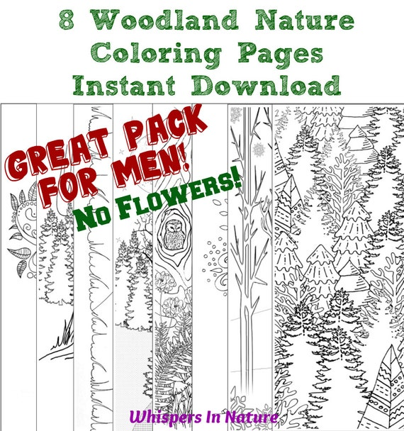 Items Similar To 8 Woodland Nature Adult Coloring Pages