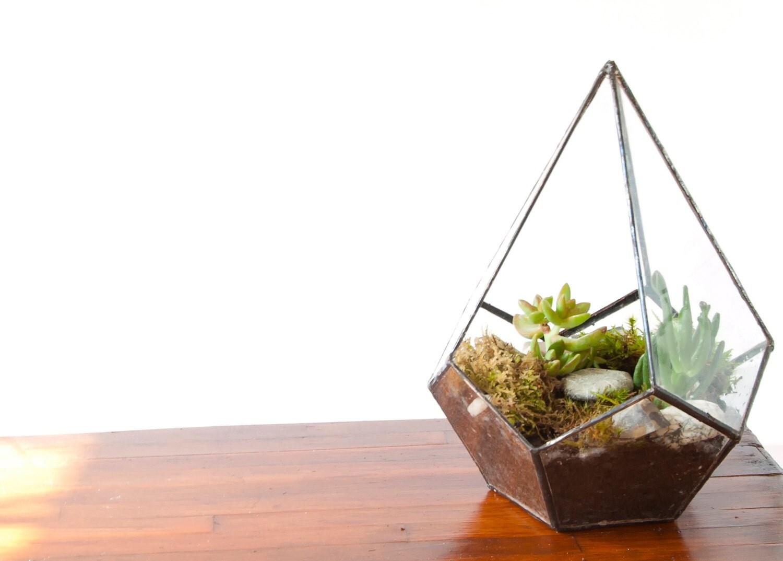 glass terrarium pentagonal terrarium teardrop terrarium. Black Bedroom Furniture Sets. Home Design Ideas