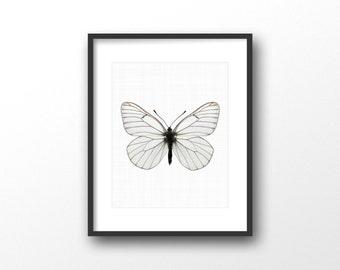 Black butterfly print - Butterfly photography print - Modern minimalist home decor - Butterfly art - Printable women gift