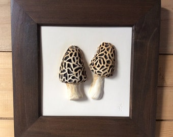 Ceramic Morel