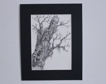 Nature Study, Pen and Ink: ornamented branch