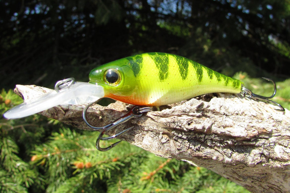 Fishing crankbait lure mcb 5 perch for Perch fishing lures