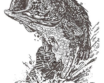 Stippled Pen & Ink Postcards signed by the Artist