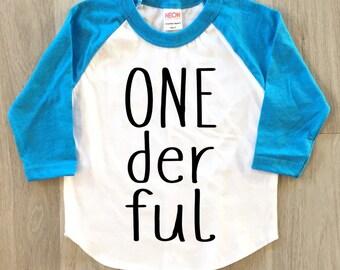 1st Birthday tshirt - baby boy or girl first birthday t-shirt - toddler birthday shirt